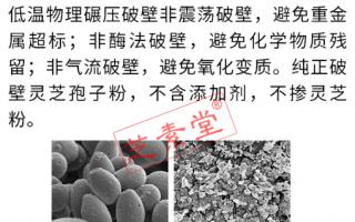 为什么选灵芝孢子粉要看破壁率?破壁灵芝孢子粉价格高吗?