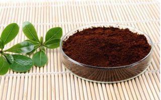 灵芝孢子粉的功效与作用对肺癌有什么好处?
