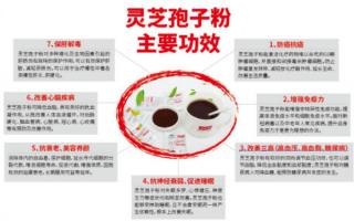 提高免疫力的食物有哪些?推荐灵芝孢子粉