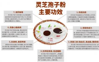 灵芝孢子粉的正确吃法应该注意哪些?