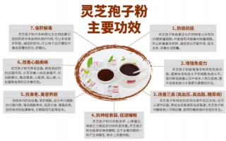 灵芝孢子粉功效和作用都有哪些?吃灵芝孢子粉要注意什么?