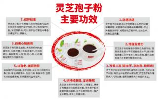 灵芝孢子粉适合老年人吃吗?哪些作用对老年人有帮助?